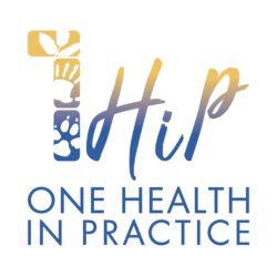 One Health in Practice