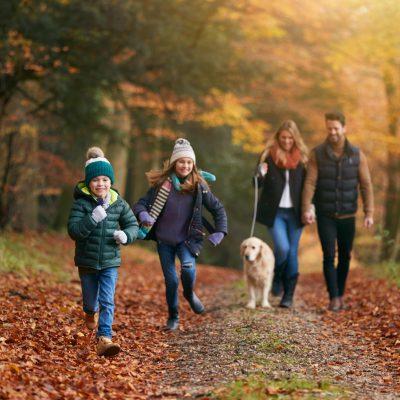 family-walking-with-pet-golden-retriever-dog-along-3T3TM78-min